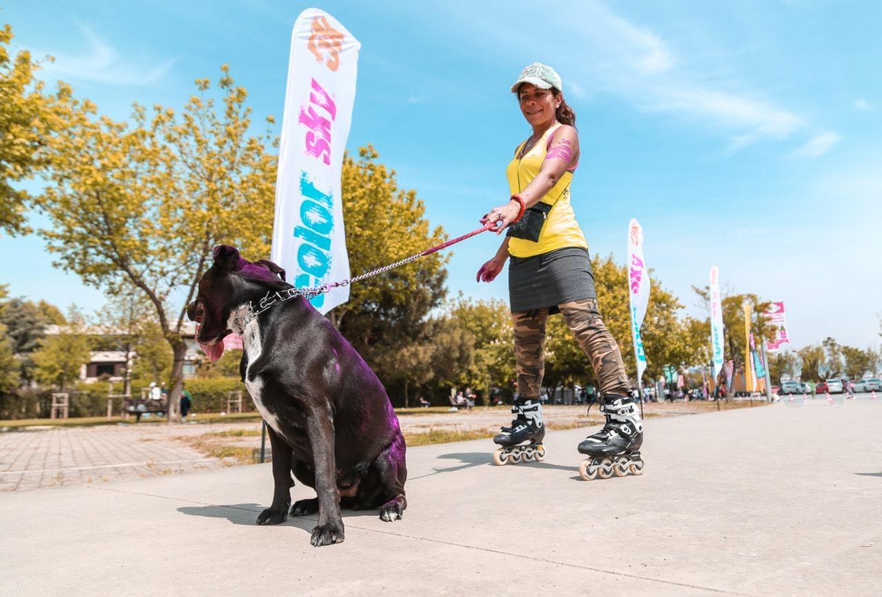 Motion hund